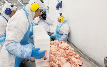 Import-Stopp für Gammelfleisch