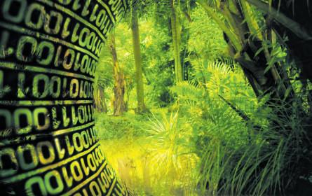 Mit dem DMVÖ durch den Daten-Dschungel