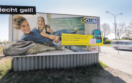 Epamedia: Hecht im Plakat-Teich