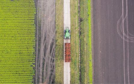 Obst & Gemüse-Export sinkt