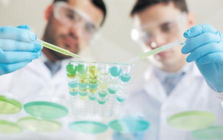 Forscher als Gründer