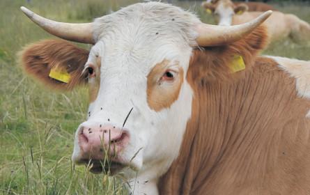Tierschutz-kontrolliert