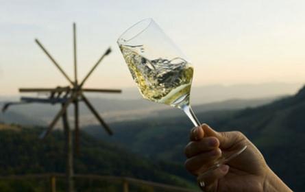 Österreichs Weinexporte im Höhenflug