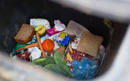 2,4 Millionen Kilo Lebensmittel gerettet
