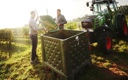 Wirtschaftskammer lädt zum Weinforum Burgenland