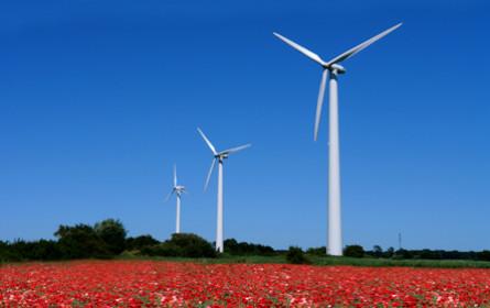 myWorld Austria baut verstärkt auf Umweltschutz