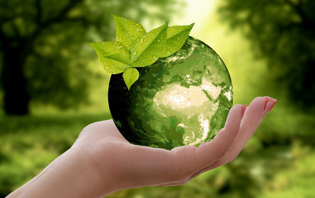 Der Umwelt verbunden: Nachhaltig drucken
