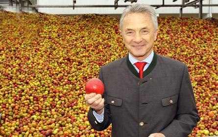 10.000 Tonnen Früchte rollen bei Spitz ein