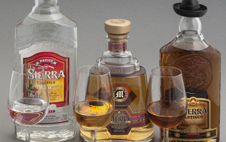"Mexikos Tequila-Industrie läuft Sturm gegen ""Teslaquila"""