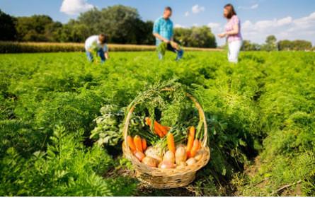 Spar zahlt Prämien an Landwirte für bodenschonenden Anbau