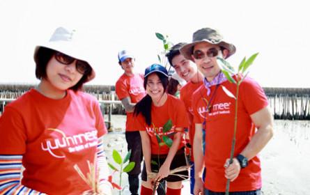 Yuu'n Mee spendet für Mangrovenwälder zu Weihnachten