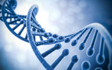 Wie Jahreszeiten unsere Gene beeinflußen