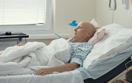 Weltkrebstag: Boom an neuen Therapien