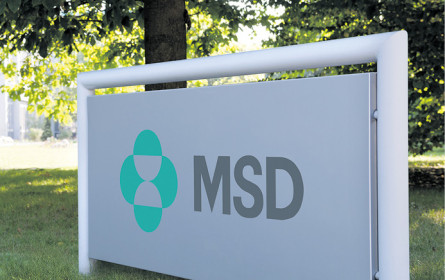 Steuerreform drückt MSD