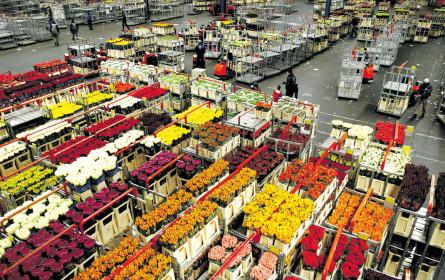 Preisbarometer Großhandel