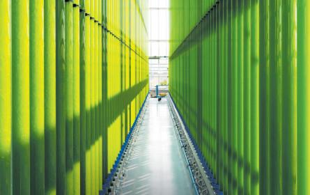 Ein neuer Hotspot der Green Technology