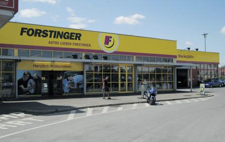 Forstinger-Sanierung läuft