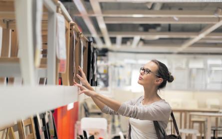 Auf Holz gebaut: Erstarkte Branche