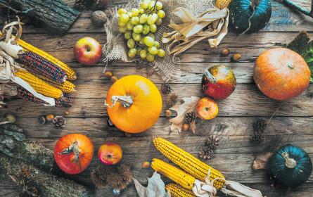 Herbstliche Finessen am Teller