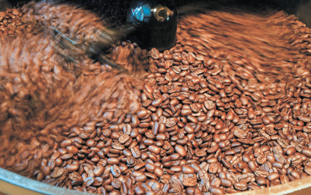 Kaffee: Preissturz