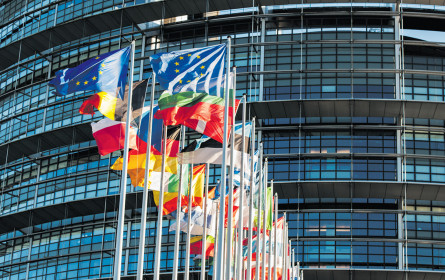 E-Manipulation der Europawahl?