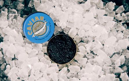 Heimischer Kaviar – Ausdauer und Geduld wird belohnt