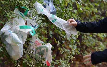 Handel unterstützt Kunststoffsackerl-Verbot