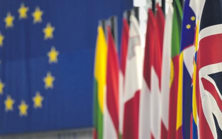 Cyberangriffe und Fake News bei EU-Wahl erwartet