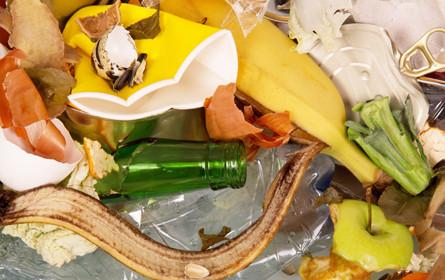 Tschechiens Supermärkte müssen abgelaufene Lebensmittel spenden