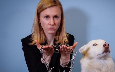 Verbotene Tierquäl-Halsbänder problemlos auf Amazon zu kaufen