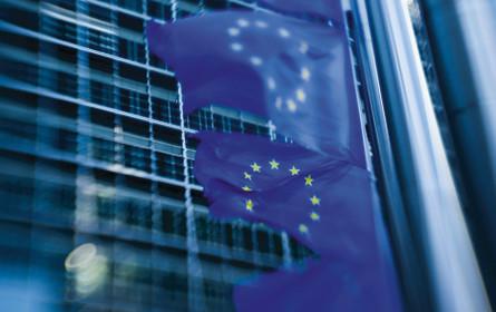 Neues EU-Urheberrecht endgültig beschlossen - Österreich stimmte zu