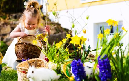 Wiener Osterhasen geben 77 Mio. Euro aus