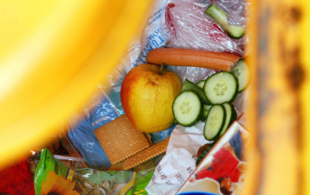 Tag der Lebensmittelverschwendung: WWF warnt vor achtlosem Umgang