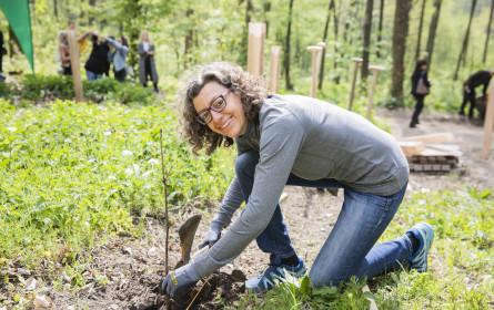 Waldquelle setzt mit Lebens(t)raum Baum nachhaltiges Zeichen