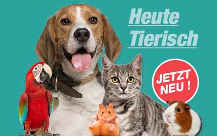 """""""Heute.at"""" startet großen Tierchannel """"HeuteTierisch"""""""