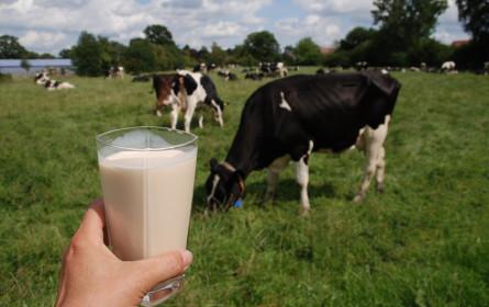 Bio-Anteil bei Milch ist steigend