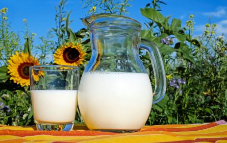 IG Milch deckt Missstände in der Milchindustrie auf