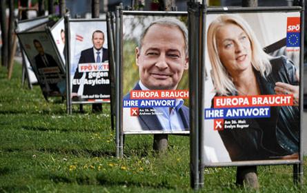 Focus: Wahlen sollen Werbewachstum bringen
