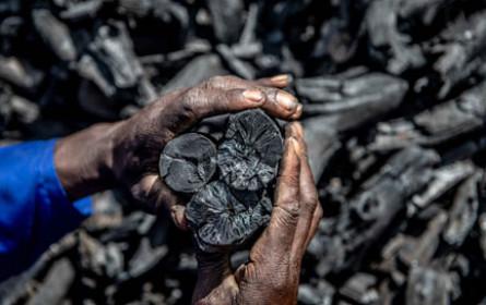 Namibia: Hofer unterstützt Projekt für nachhaltige Holzkohle