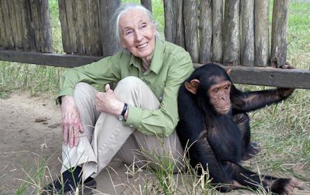 "Präsentation des ""Roots and Shoots""-Projekts mit Jane Goodall"