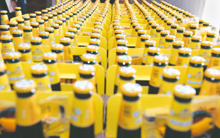 Ottakringer im Halbjahr mit mehr Umsatz, Bierabsatz gesunken