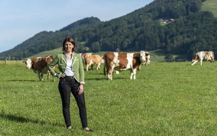 LK OÖ fordert Verzicht auf Billigimporte von Rindfleisch und Butter