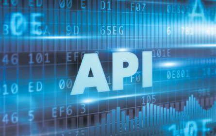 Die schöne neue Welt der API
