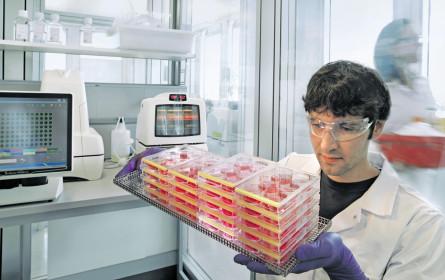 Bayer kooperiert mit Roche