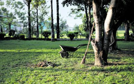 Verantwortungsvoll und nachhaltig gärtnern