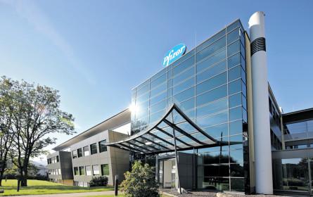 Pfizer kauft Biotech-Firma