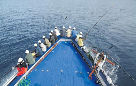 Rio Mare hilft mit, den Ozean zu retten