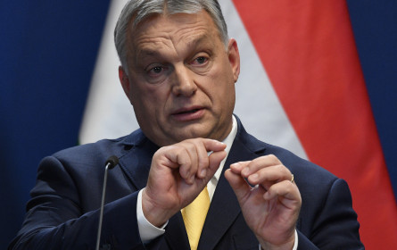 ROG kritisiert Anfeindungen durch ungarischen Regierungssprecher