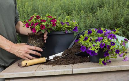 Wohlfühloase Garten - Immer schon und jetzt noch mehr