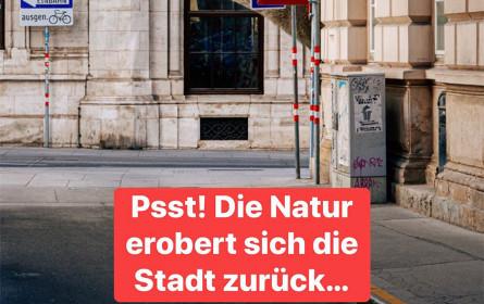 """WienTourismus sichtet """"Die Mietzi aus dem Wienerwald"""""""